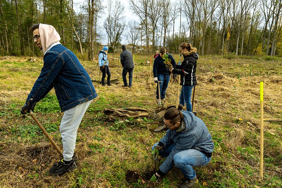 Bäumeplfanzen Azubiprojekt