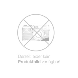 Heißräucherschrank FS 2/70 MAXI Edelstahl